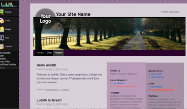 Design Wordpress theme without any knowledge of HTML or CSS - Lubith.com